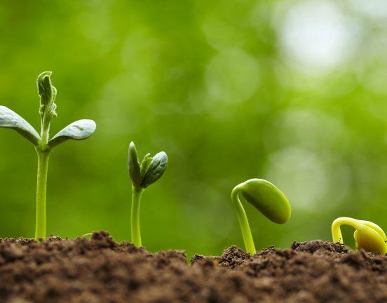 Discover Soil Sampling