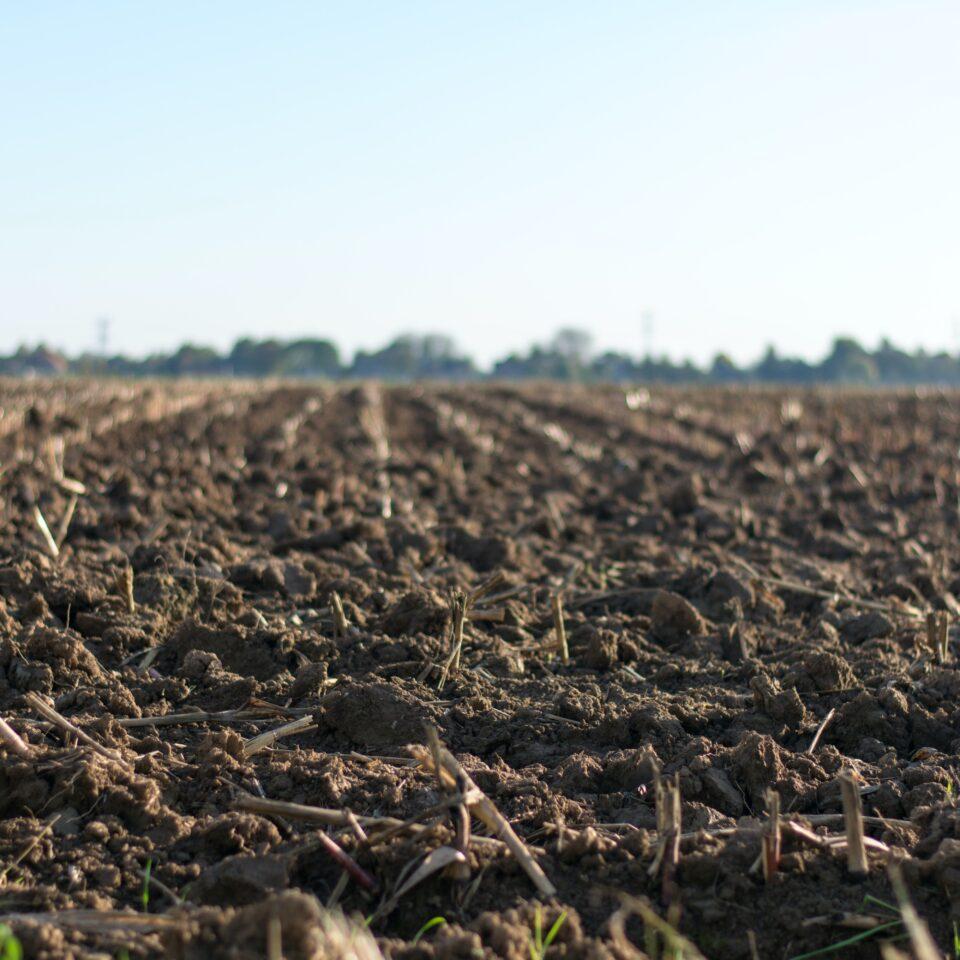 5 Reasons to Soil Sample
